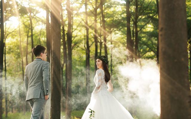 花漾婚礼影像-人像森系唯美