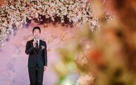 婚礼主持人柳青主持视频片段(爱在双城)