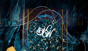 「树洞婚礼」· 蓝色大海的传说