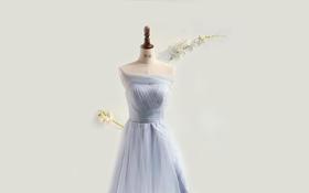 SeSe婚礼王国-彩虹短款伴娘服