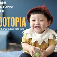 韩国童感 全新《Zootopia》系列