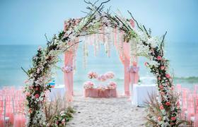 《雅媛婚礼策划》粉色浪漫唯美 户外-草坪沙滩婚礼