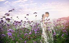 苏州伊诺婚纱摄影—幸福见证