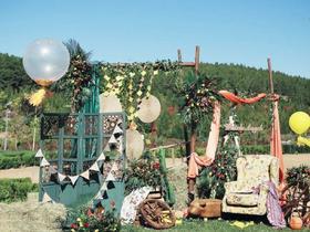 *艾薇汀婚礼*户外创意婚礼-南瓜马车与公主