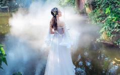 植物园迷雾主题案例客片欣赏