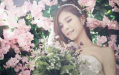 伊甸园-韩国Miss Luna Studio