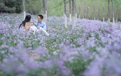 蓝途映画婚礼摄像总监档 (五机位+摇臂)