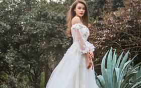 【卡卡夫人婚纱定制】新款齐地婚纱