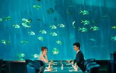 三亚旅拍 浪漫海底世界+凤凰岛双景点拍摄
