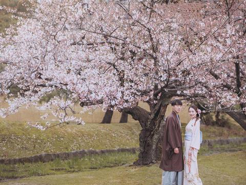 【日本】京都樱花旅拍视频MV两天总监团队