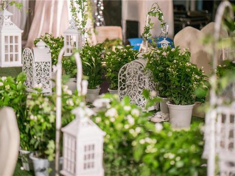 『蒂琳婚礼企划』白绿森系森林系 赠送新娘秘书