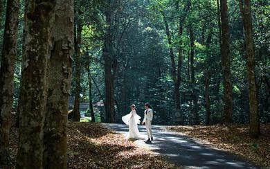 爱旅拍巴厘岛•原创作品•原始生态森林公园