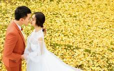 「成都客片」最美银杏季上线