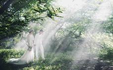 【时尚芭莎】最新主题 秘密花园