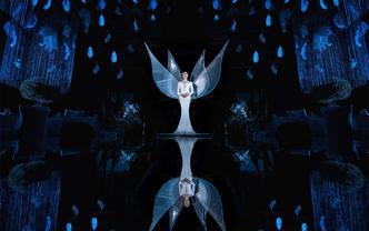 【典酷创意策划】私人订制定-天使降临-《光之翼》