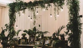 【美亦婚礼】氧气——白绿色系小清新森系室内婚礼