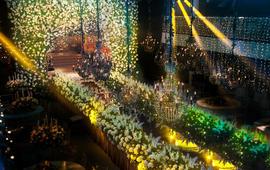 爱暖暖婚礼《森系婚礼一路繁花》