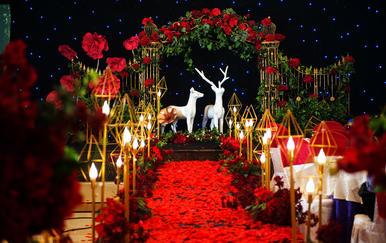【乐乐婚礼】人气爆品套餐+四大+花车装饰全套