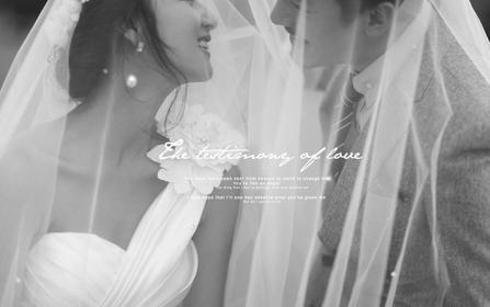 【时尚经典婚纱摄影】唯美系列婚纱——真爱永恒