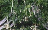 【草坪婚礼布置】安妮塔婚礼馆 | Flipped 怦然心动
