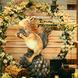 【瑞琳婚舍·安达仕】松鼠の橡果子