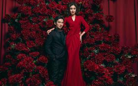 倾城之恋 红色浪漫  续写不一般的美丽
