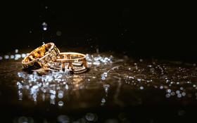 牧梵·wedding |温雅