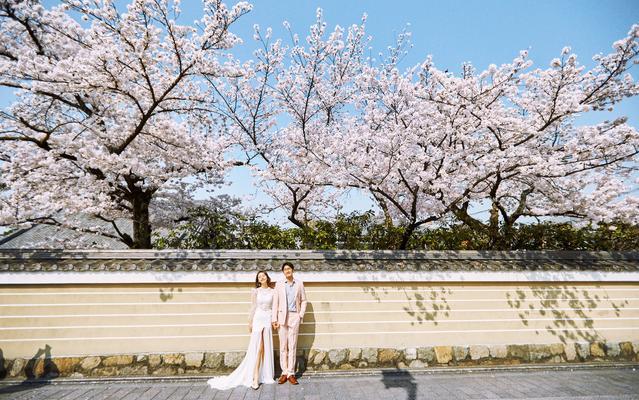 限时优惠价——在日本,小确幸的美照在这儿!