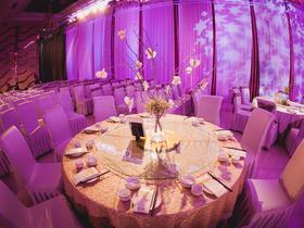 【紫色主题婚礼】一帆丰顺大酒店