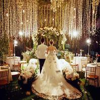 乐玛摄影新馆开拍 星光花园婚礼 底片精修全送