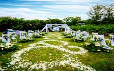 指尖婚礼——《青青我衿,悠悠我心》草坪求婚仪式