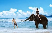 普吉岛礁石群+沙滩+特色寺庙+街景拍摄