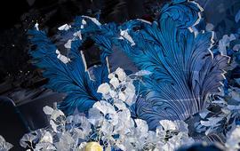 蓝色的水波纹里,似花非花.