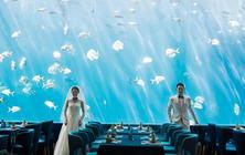 【本季热推】亚龙湾海底世界拍摄+海棠湾+清水湾