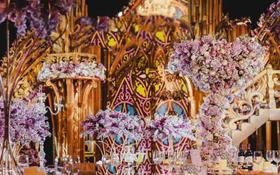 Special  wedding《紫色蔷薇》