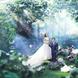 【游艇婚纱】 王者宫殿 世纪之城 豪华游艇