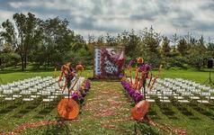 婚礼日记--十月如歌