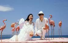 #三亚#3天2晚酒店免费住,还享接机与包邮!