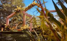 【秋日暖阳】秋日私语|棒棰岛