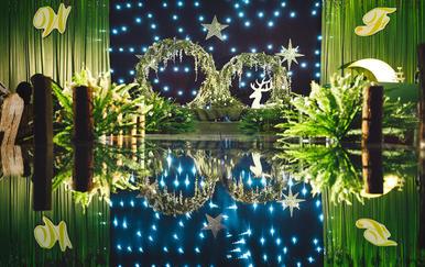【凡熙婚礼策划】- 星空下的森林(含资深4大)