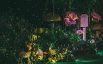 『 佳美娜订制森系婚礼 | 爱的仙境 』