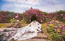【花田印象】花季特别推荐--玫瑰园