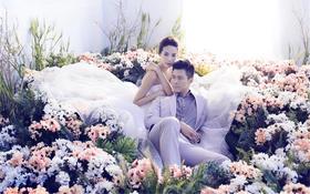 【大视觉】恋爱花屋 明星同款主题婚纱照