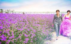 原野印像·花漾系列