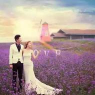 韩派印象婚纱摄影