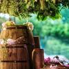 童话森系风婚礼