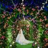 婚礼恍若梦幻仙境 森系也可以很特别