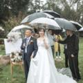草坪婚禮最困難的兩個點,我們全占了