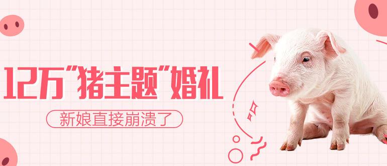 #秋秋#猪猪婚礼+8.21-8.23