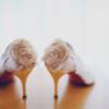 DIY多肉回礼与抽奖礼物 网购婚鞋性价比爆棚